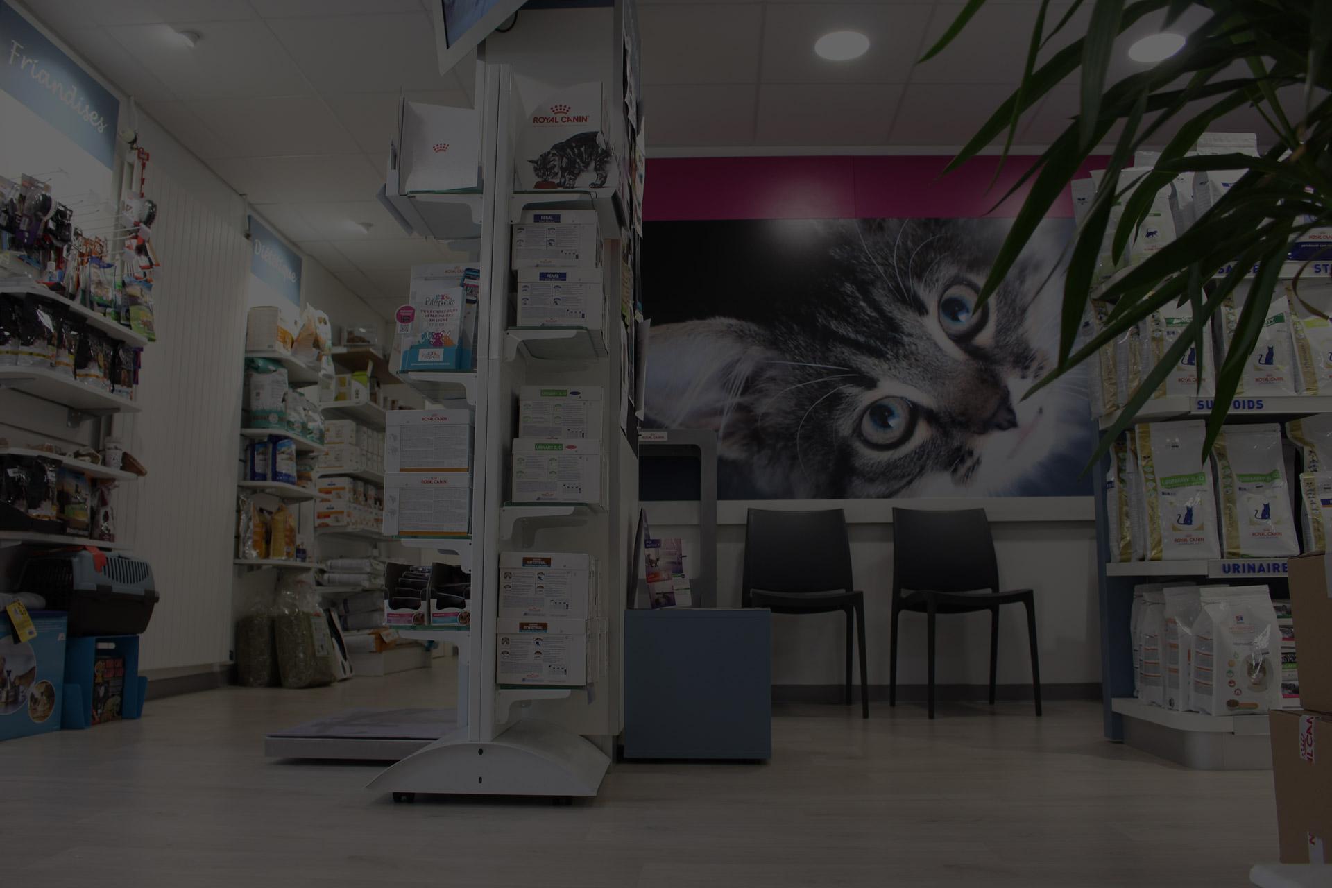 Cliniques vétérinaire